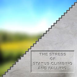 The stress of status climbing and falling is about the stress of change.