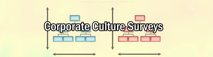 What Are The Two Types Of Culture