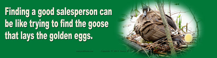 Hiring a good salesperson can be as elusive as trying to find the goose that lays the golden eggs.