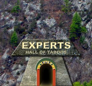 Most important taboo about experts is that they are determined subjectively.