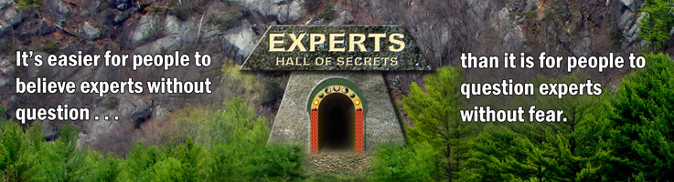 Most Blasphemous Secret About Experts